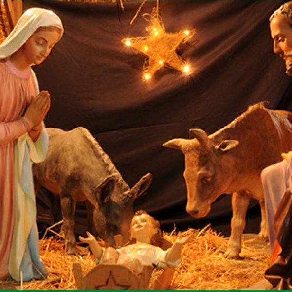 Primaria – El Nacimiento de Jesús